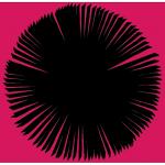Ally - Pink Spiral 3